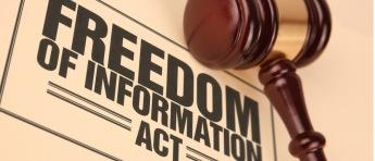Freedom of Information art